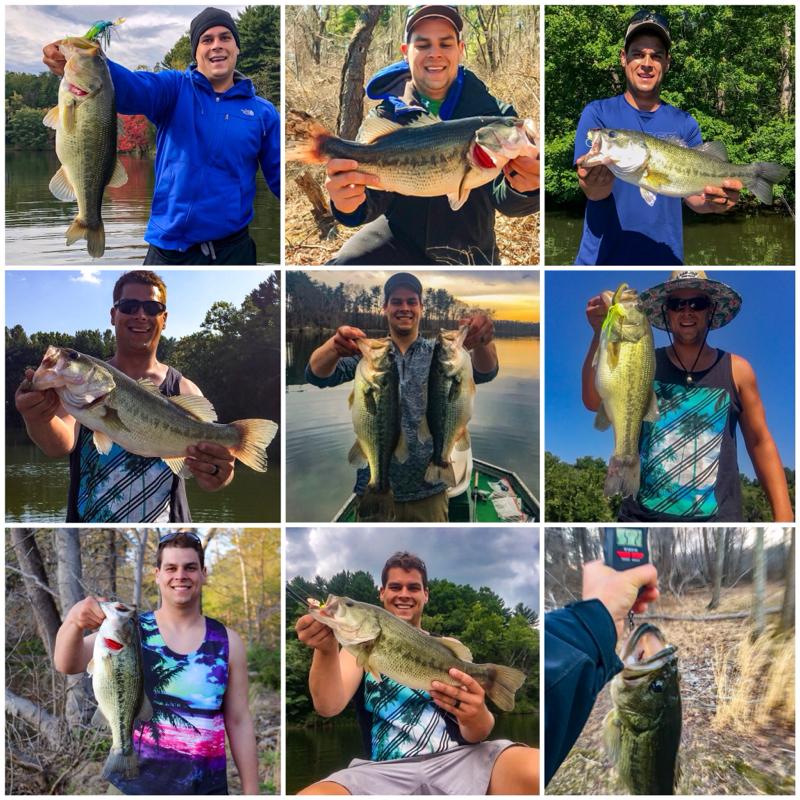 A photo of Pescetto Bass Fishing LLC's catch
