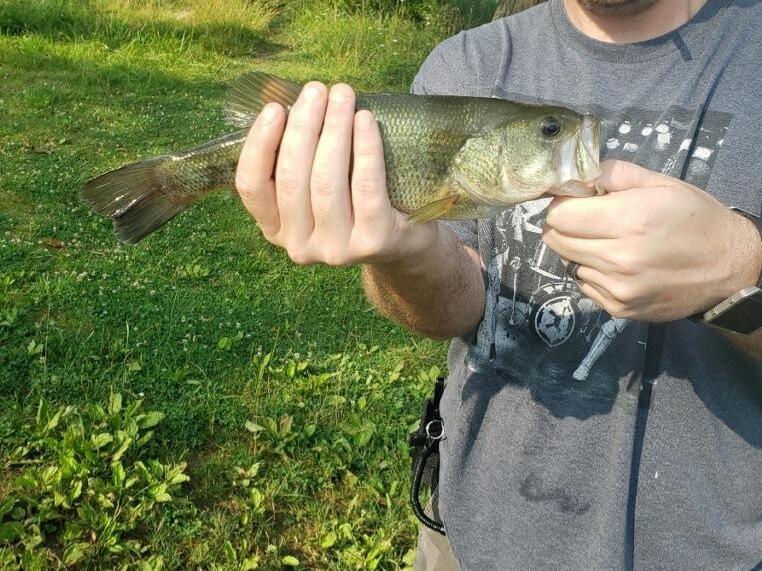 A photo of William Ayres's catch