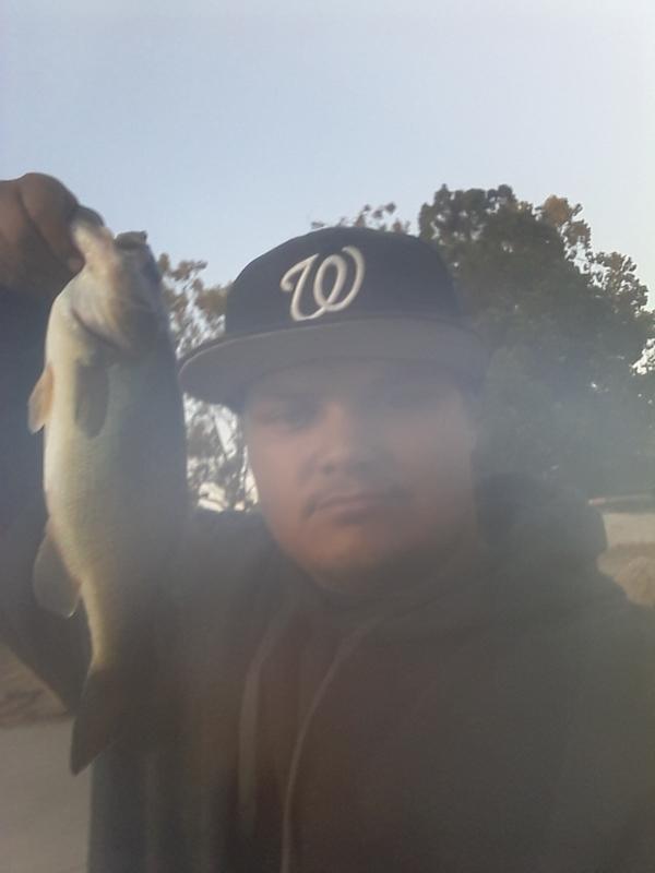 A photo of MATTHEW  Owen's catch