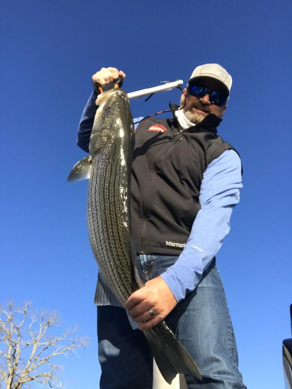 A photo of Darren Mulford 's catch