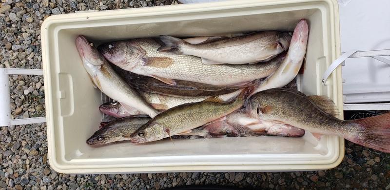 A photo of Jason  Underwood's catch