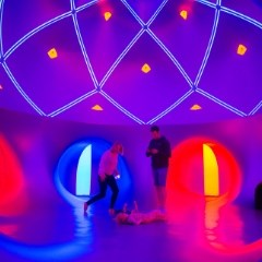 Luminarium Priority Access