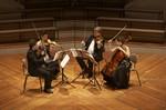 Stradivari String Quartet