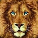 ...AF...LION