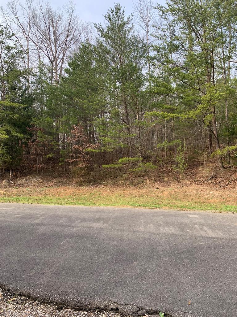 Lot 1 Timber Trail, Newport, TN 37821