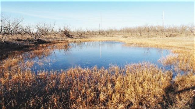 15068 County Road 341, Abilene, TX 79601