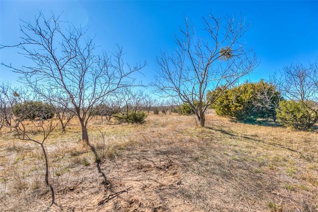 0 County Rd 194, Tuscola, TX 79562