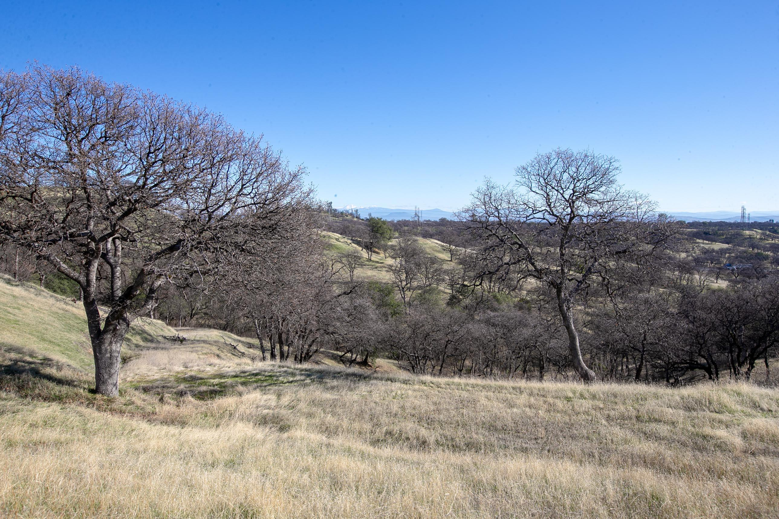 Happy Valley Trail Lot 13, Cottonwood, CA 96022