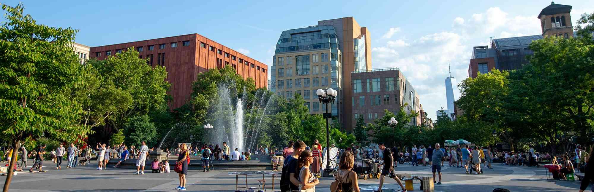 New York University - Niche