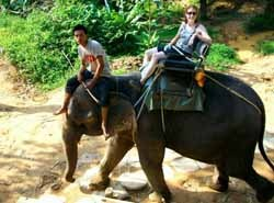 Trying my hand  at riding an elephant in rural Thailand