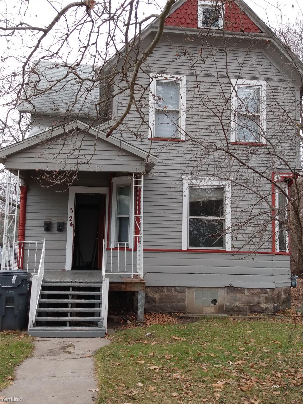524 W Willard St, Kalamazoo, MI - $935