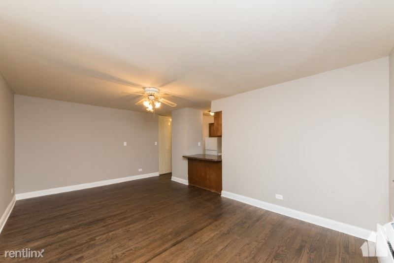 450 W Aldine Ave 303, Chicago, IL - $1,290