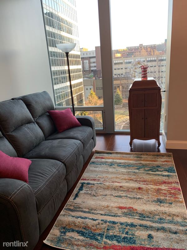112 Washington Pl, Pittsburgh PA, Pittsburgh, PA - $1,555 USD/ month