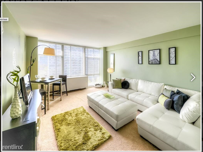 S King Dr, Chicago IL - 2076USD / month