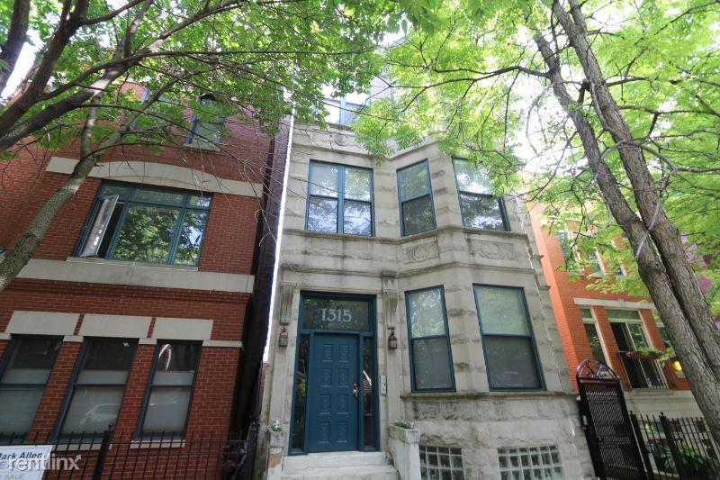 1315 W Fillmore St, Chicago IL 1F, Chicago, IL - $1,700 USD/ month