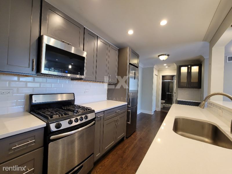 541 W Oakdale Ave, Chicago IL, Chicago, IL - $1,695 USD/ month