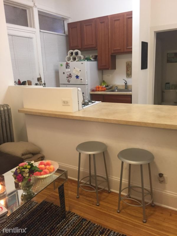1912 N Lincoln Park West 2S, Chicago, IL - $1,825 USD/ month
