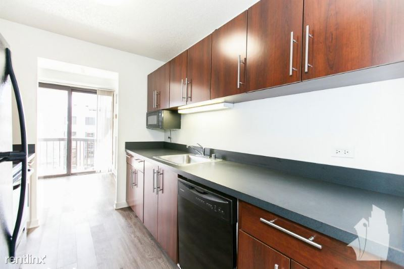 1133 N Dearborn St 1209, Chicago, IL - $3,027 USD/ month
