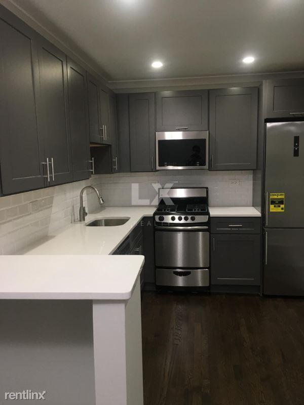 450 W Aldine Ave, Chicago, IL - 1,250 USD/ month