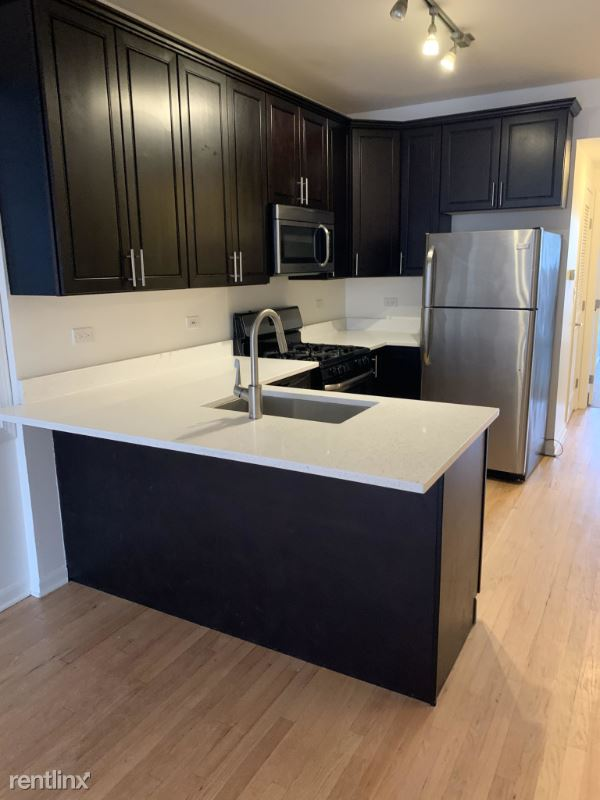 1543 West Walton 1, Chicago, IL - 2,600 USD/ month