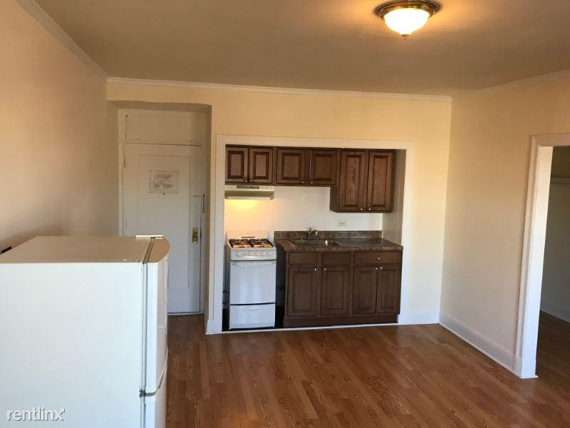 2779 N Milwaukee Ct, Chicago IL 134, Chicago, IL - 950 USD/ month