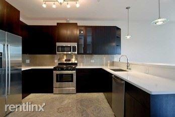 1635 W Cortland St 102, Chicago, IL - 2,700 USD/ month
