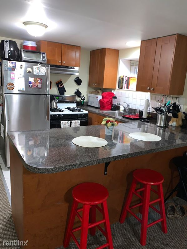 1323 N Wicker Park Ave G, Chicago, IL - 1,300 USD/ month