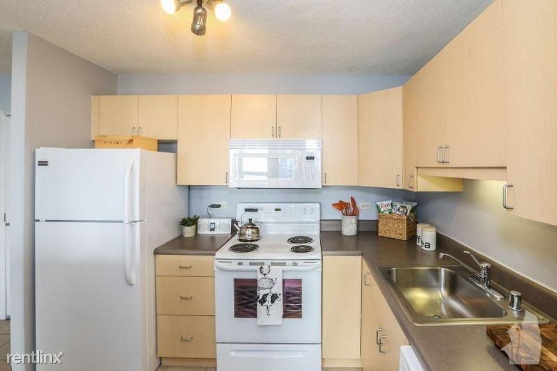 1212 S Michigan Ave 0805, Chicago, IL - 1,464 USD/ month