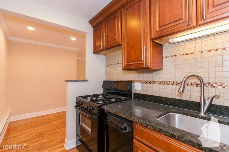555 W Arlington Pl 205, Chicago, IL - 1,790 USD/ month