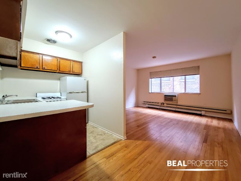 660 W Wrightwood Ave 308, Chicago, IL - 1,025 USD/ month
