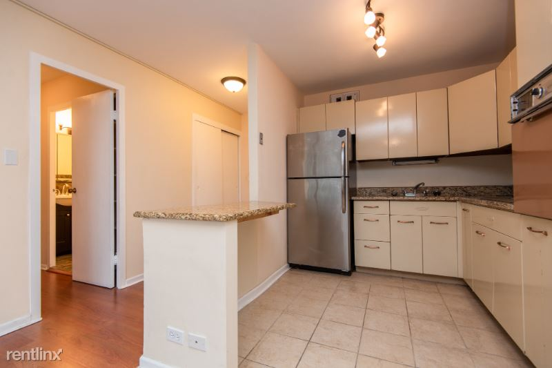 3550 N Lake Shore Dr 2411, Chicago, IL - 1,250 USD/ month