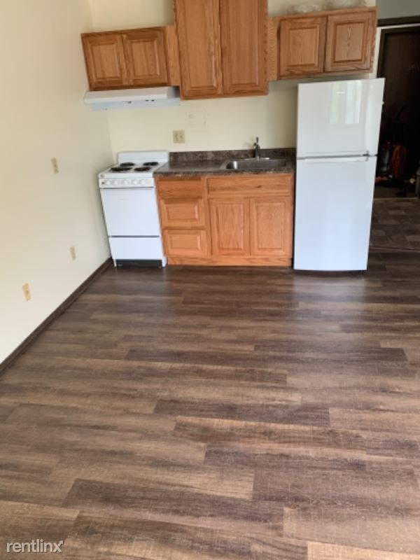 454 W Dayton St, Madison WI 203, Madison, WI - 645 USD/ month