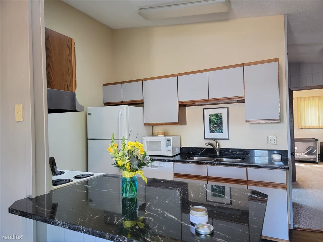 1151 Canyon Rd Unit 13, Wisconsin Dells, WI - 1,000 USD/ month