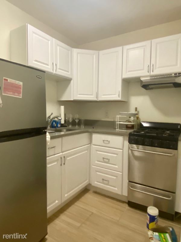 550 Massachusetts Ave 1, South End, MA - 1,725 USD/ month