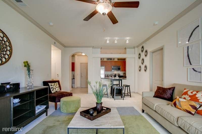 10101 South 1st Street, Austin, TX - $1,590