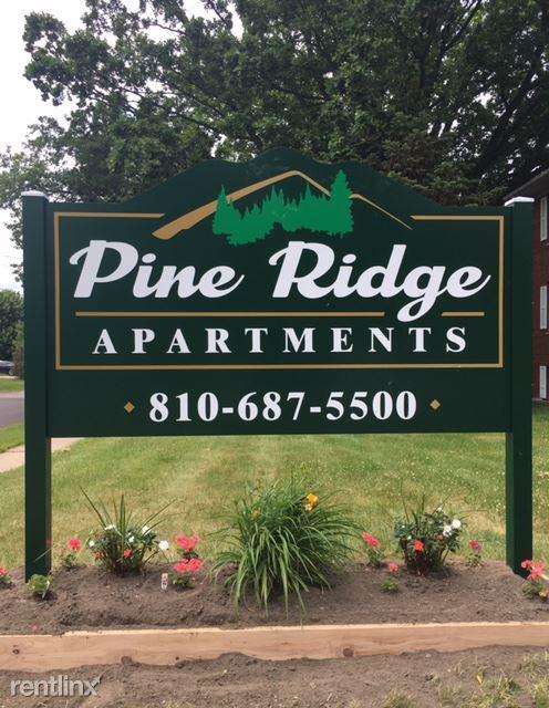 528 Pine St, Clio, MI - $600