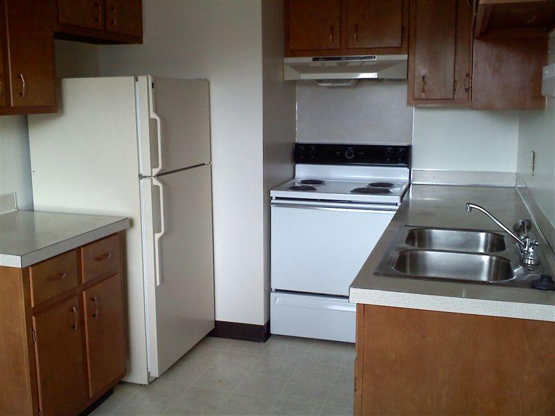 206 Hill St, Portland, MI - $795