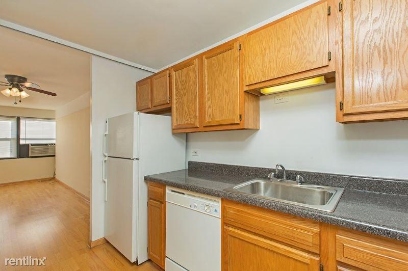 833 W Buena Ave 2208, Chicago, IL - $1,420