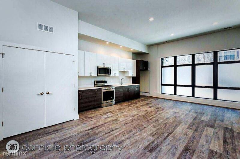 847 N Larrabee St # 1f, Riverdale, IL - $1,950