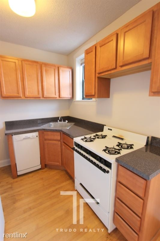 3839 N Greenview Ave, Chicago, IL - $1,445