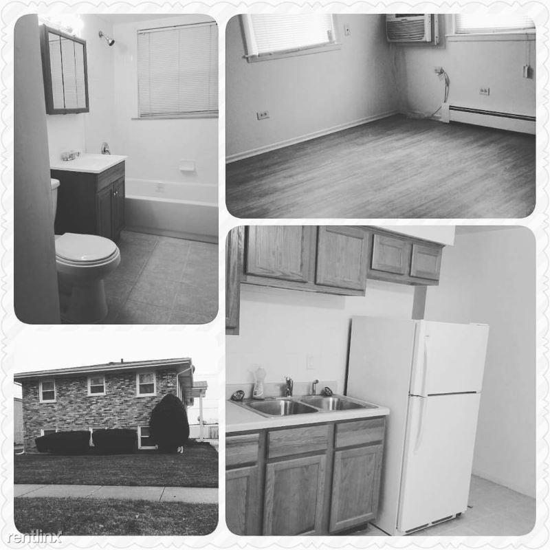 4147 Lindenwood Drive 1N, Matteson, IL - $950