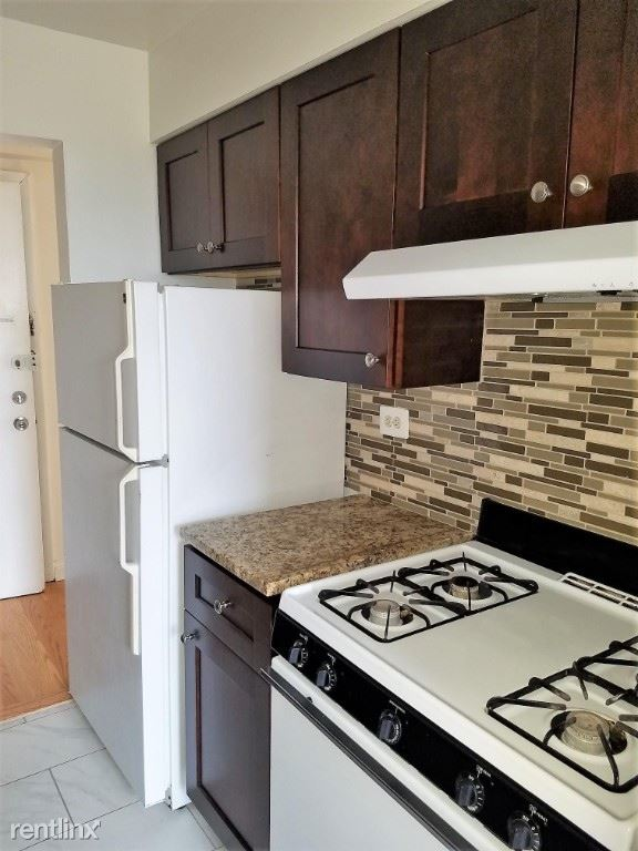 3710 N Pine Ave 102, Chicago, IL - $1,100