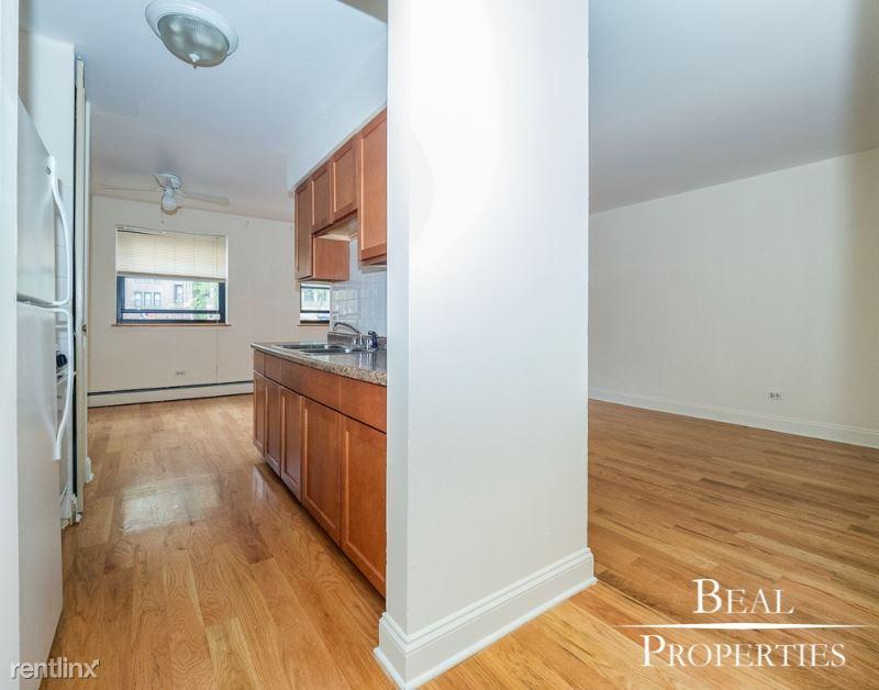 510 W Briar 501, Chicago, IL - $1,448