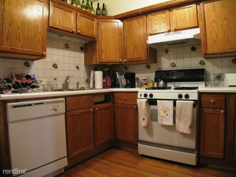 1817 N Clybourn Ave 1, Chicago, IL - $2,595