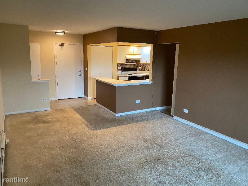 2214 S Goebbert Rd 376, Arlington Heights, IL - $1,050