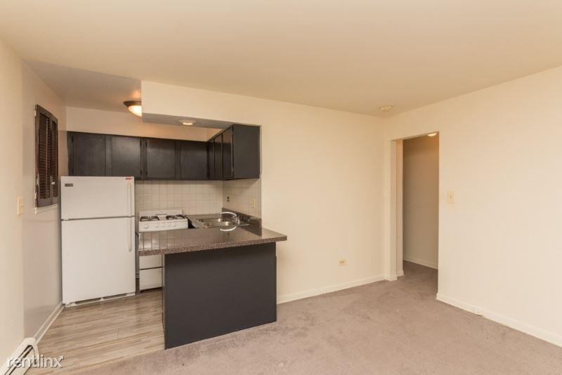 521 W Briar Pl 406, Chicago, IL - $949