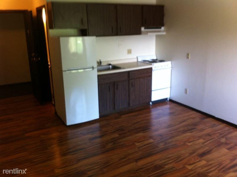 454 W Dayton St, Madison, WI - $685