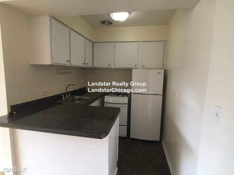 424 W Oakdale Ave, Chicago, IL - $1,045