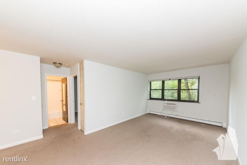 445 W Barry Ave 203, Chicago, IL - $1,420
