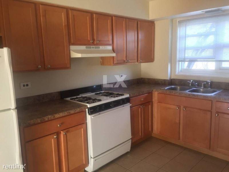 562 Princeton St, Des Plaines, IL - $1,350